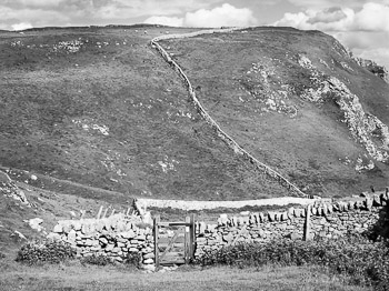 """Upon Winnats Pass"" by Nat Coalson. Black and white photograph of a wooden gate and stone fences within a deep limestone gorge along Winnats Road near Castleton in the High Peak District of England. In the distance, sheep graze high atop a grassy moor. Prints available; for details click the Purchase link above."