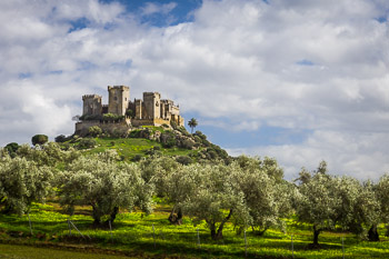 Travel Photograph: Almodovar Castle